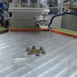 Impresora automática de la pista de 2 colores para la escala plástica