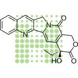 Qualität (+) - Camptothecin