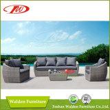 Chaise extérieure de meubles de rotin/chaise de rotin (DH-608)