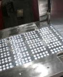Dpp250xf Tablette-Kapsel-Blasen-Verpackungsmaschine-u. Blasen-Verpacker u. Blasen-Verpackmaschine (DPP-250XF)
