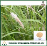 Estratto organico naturale della polvere dell'erba di Lalang/erba di strato/estratto radice di Imperata Cylindrica