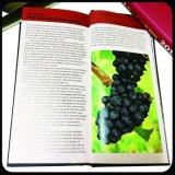 Impression faite sur commande de brochure de livre de livre À couverture dure d'impression offset de multicolores