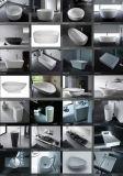 Baquets chauds de cuvette de forme de baquet de résine de baignoire ovale blanche de luxe de pierre