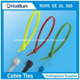 UVwiderstand-Nylonkabelbinder-Reißverschluss-Gleichheit