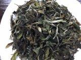 Weißer Penoy chinesisches Weiß-Standardtee China-Tee EU-