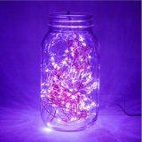 Purpurrotes dekoratives LED-Seil-Licht-Weihnachtsinnendekoration