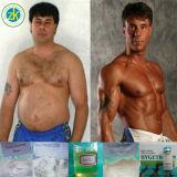 El mejor músculo del acetato de la testosterona de la calidad 99.5% realza el polvo esteroide