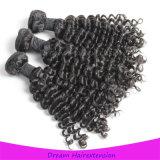 malaysisches Haar-lockiges Webart-Haar der Jungfrau-8A