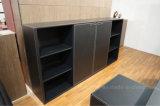 Meuble d'archivage en bois de bureau de vente chaude (C3)