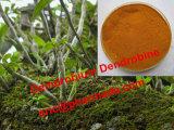 Zuiver Natuurlijk Demdrobium Geneeskrachtig Gebruik Dendrobine