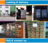 LEITUNGSKABEL-Säure-Batterie-heißer Onlineverkauf der Qualitäts-Batterie-12V 120ah Solar