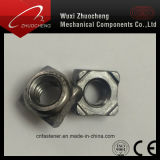 DIN928 noix carrée de soudure de l'acier inoxydable 316