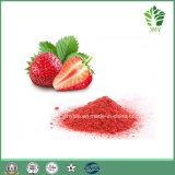 مصنع إمداد تموين تجمّد عضويّة - ينشّف توت أرض ثمرة شحن عصير مسحوق