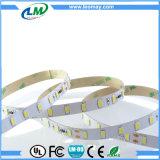21W 350LEDs/M SMD 5630 konstante Streifen des Bargeld-LED