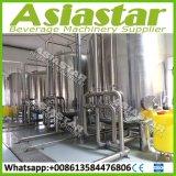 SUS304/316 de aangepaste Installatie van de Reiniging van het Water van de Filter van het Drinkwater
