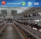 De zilveren Kooien van de Kip van de Laag van het Ei van het Landbouwbedrijf van het Gevogelte van de Prijs van de Afzet van de Fabriek van de Ster