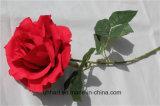 China-einzelne Qualitäts-Natur-Noten-künstliche Blume Rose für Hochzeits-Dekoration