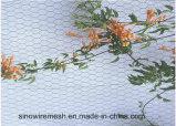 Rete metallica del pollame della rete fissa del giardino di Sailin