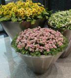 호텔과 아파트를 위한 스테인리스 꽃 재배자