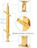 Disegno dell'inferriata dell'acciaio inossidabile del balcone (HR-1310D)