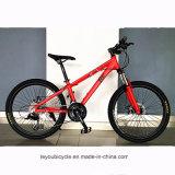 Bici barata al por mayor del camino del carbón (ly-a-201)