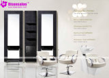 Popular de haute qualité Salon Meubles Shampooing président Salon Barber (de P2036)