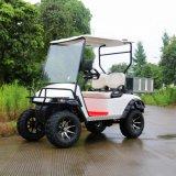 2017 de Nieuwe Model Elektrische Kar van het Golf van Vervoer 2 Seater
