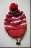 Jeu chaud de chapeau et de chandail d'animal familier de l'hiver