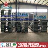 Клетка цыпленка слоя поставщиков оборудования цыплятины в Южной Африке