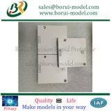 Подгонянный CNC подвергал прототип механической обработке пластичной крышки быстро с Silk картиной