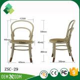 Unbedeutender Bentwood Stuhl für Standardschlafzimmer in der Buche (ZSC-29)