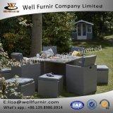 Well Furnir 8 Seat para Family Party Garden Rattan Cube Dining Set