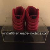 Fornitore acrilico di Shenzhen del contenitore di pattino di qualità eccellente