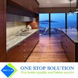 Gabinetes de cozinha modernos modulares da mobília da cor morna popular (ZY 1083)