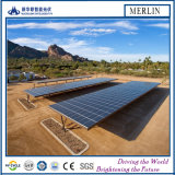 Sistema solare del modulo del poli silicone