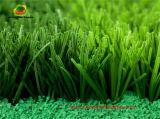 Césped artificial para el campo de fútbol de hierba deben colmarse