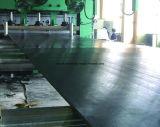 Correia transportadora resistente fria de sistema de manipulação do material da área fria