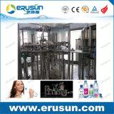 Remplissage de l'eau minérale de bouteille d'animal familier d'acier inoxydable
