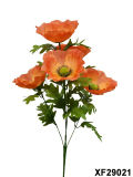 Artificiale/Plastic/Silk Flower Single Stem di Poppy con 5 Branches (XF29021)