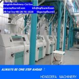 옥수수 Milling Machine 중국 Maize Flour Mill (10tpd 50tpd 100tpd)