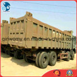 사용된 Wheel HOWO Heavy Dump Cargo Truck (8*4, 12Tyres 의 디젤 엔진 엔진)