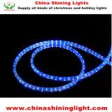 Luces de la decoración LED del día de fiesta de la Navidad