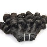 Prolongation malaisienne Lbh 147 de cheveux humains de Vierge bouclée de Fumi de prix de gros de gros