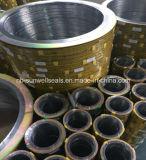 Boucle extérieure spiralée d'acier du carbone de remplissage des garnitures 304graphite de blessure/GTS (SUNWELL)