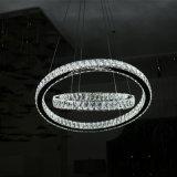 De Ronde Lamp van de Tegenhanger van het Kristal van Luxe twee voor het Project van het Hotel