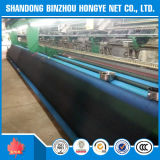 Réseau vert ignifuge et UV-Resistent de sécurité dans la construction pour la couverture d'échafaudage