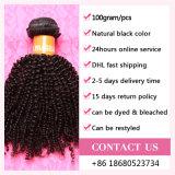 ブラジルのアフリカのねじれたカーリーヘアーの織り方の拡張機械Weft安いアフリカの巻き毛のねじれた人間の毛髪もつれを取除かないこと