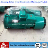 La Pioggia-Proof Electric Wound Rotor Motor per Crane