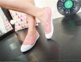 Sapatas de lona da menina confortável da chegada nova (NF-1)