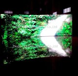 Afficheur LED de location de publicité polychrome d'intérieur élevé de la définition P3.91